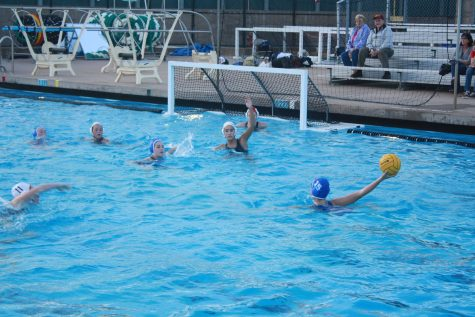 Water polo finishes strong despite losses