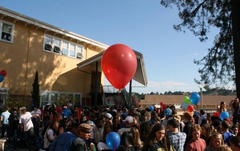 Gallery: club day spikes student interests