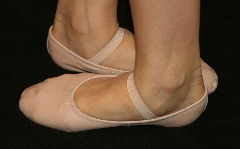 Lisa Mallet Does Ballet