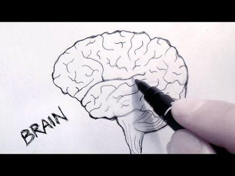 A Few Tips from an Artist's Mind