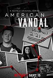 American Vandal Review