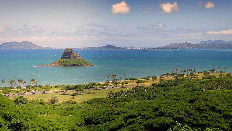 Mt.+Carmel+Church+Lends+a+Hand+in+Oahu%2C+Hawaii