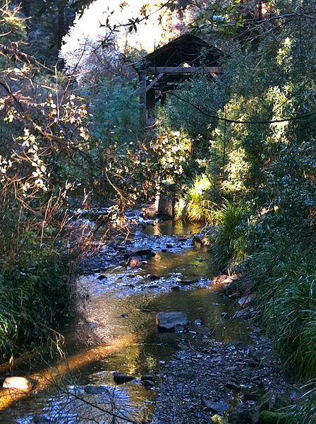 Old Mill Creek Suffers Sewage Spill