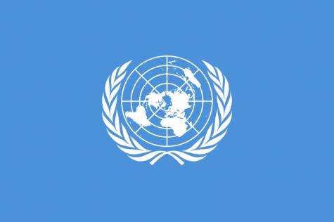 Model UN Club Expands