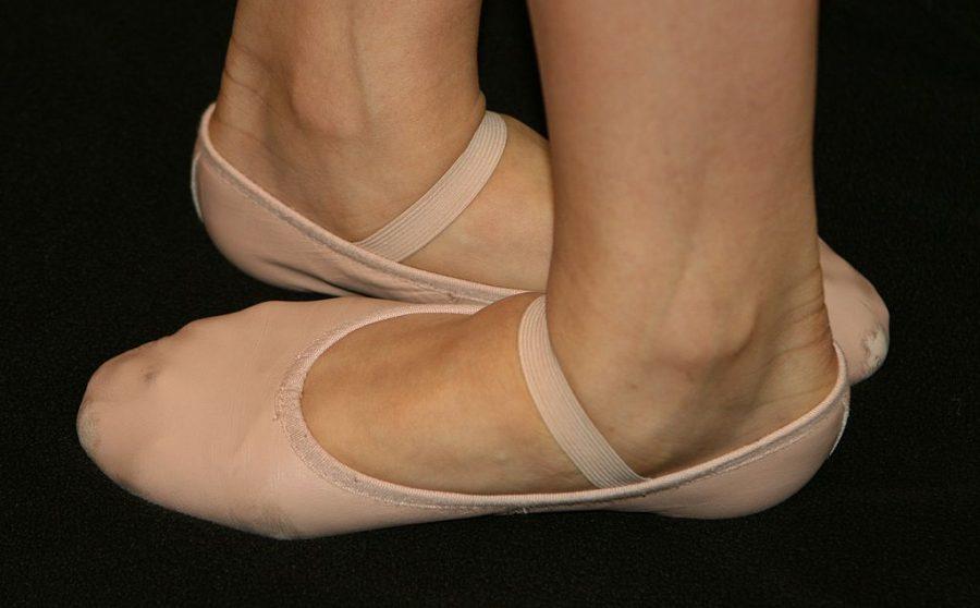 Lisa+Mallet+Does+Ballet