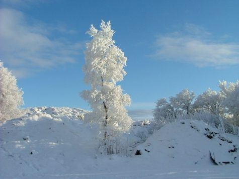 Advice For a Prime Ski Season