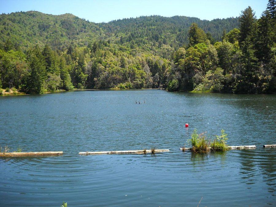 Winter+Rain+Fills+Marin+Reservoirs