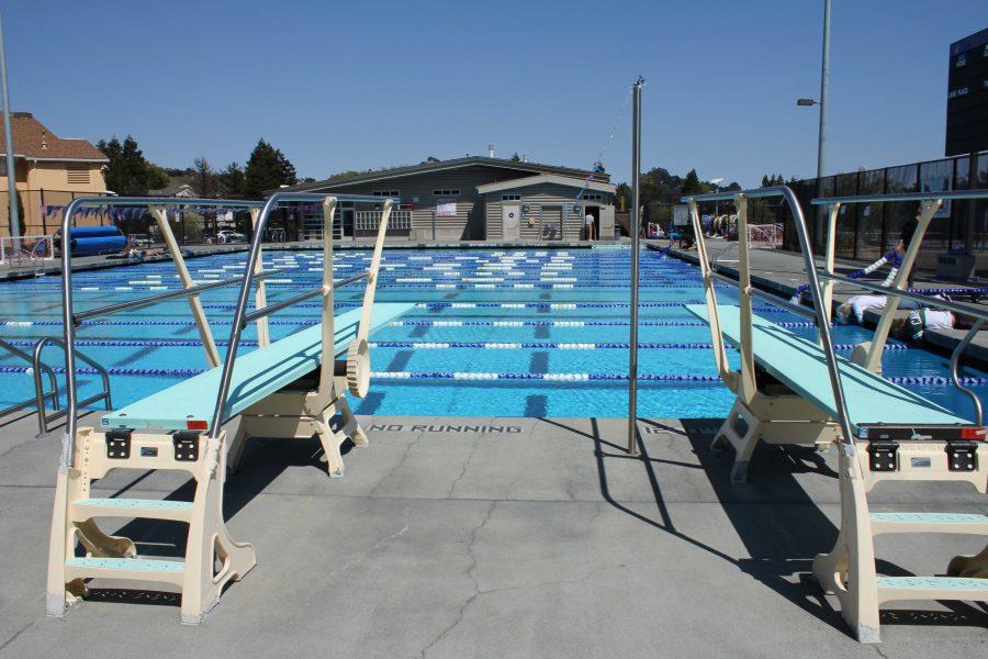 Girls' Varsity Water Polo Loses to Novato
