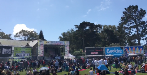 The Tam News Goes to the 420 Festival