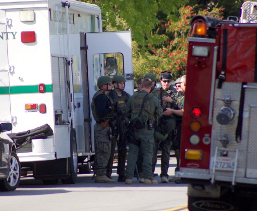 Shooting in Mill Valley