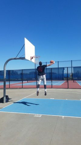 The Giant Kiwi