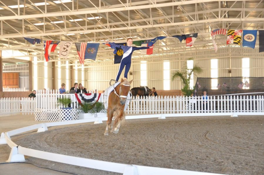 Vaulting+Over+the+Competition