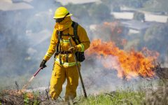 Photos: Controlled Burn on Horse Hill Prepares for Upcoming Fire Season