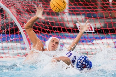 Varsity water polo looks to rise to top