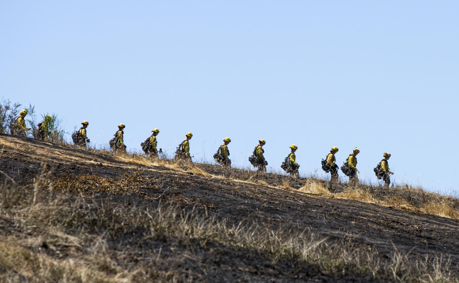 The Marin County Fire Department administers a controlled burn in San Rafael. (Ethan Swope)