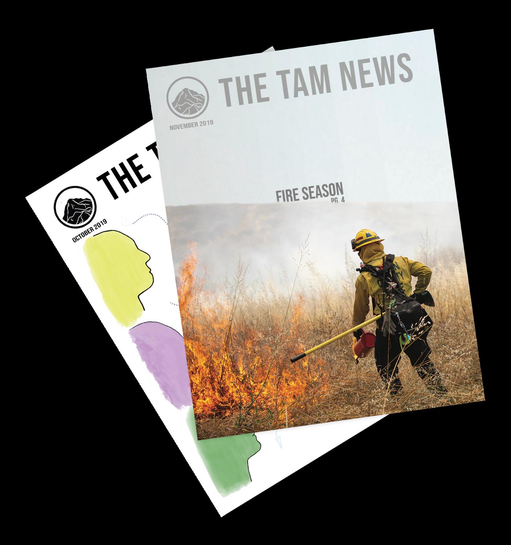 Tam News November 2019
