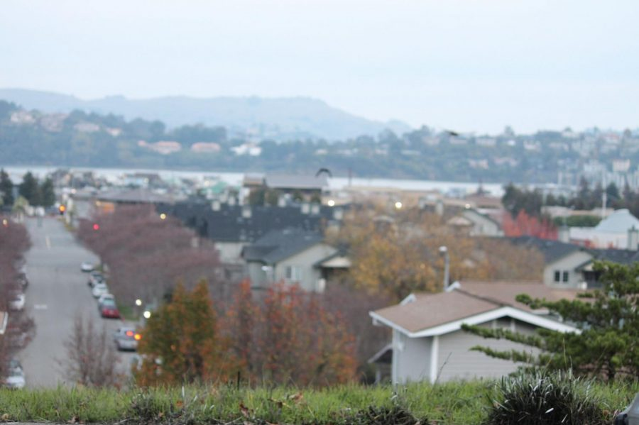 Contra Costa police raided homes in Marin City on November 14. (Benjy Wall-Feng)