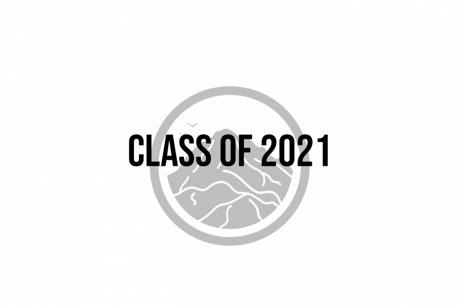 A Survey of the Class of 2021